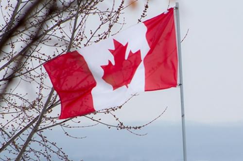 بازار کاشی سرامیک کانادا کاهشی شد